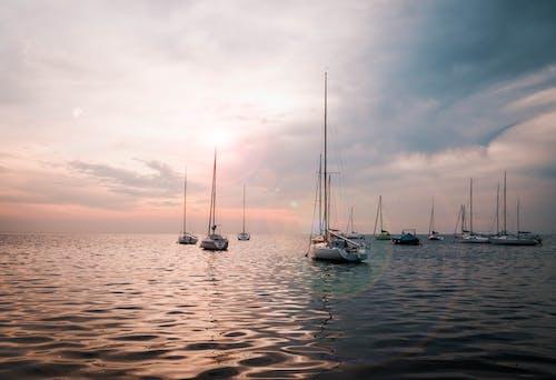 Základová fotografie zdarma na téma acqua del lago, acqua di mare, acque poco profonde