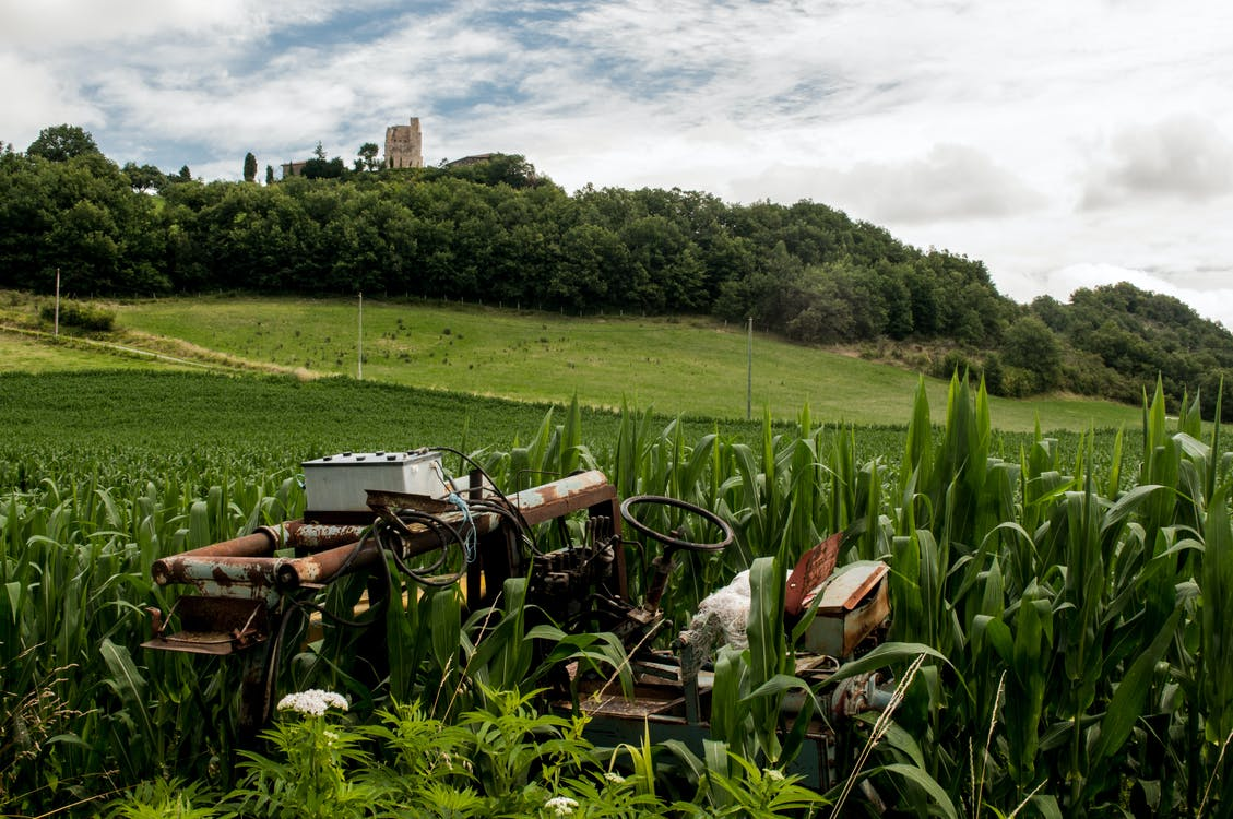 поле, разбитый, ржавчина