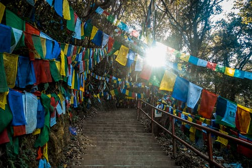 Free stock photo of buddha, buddhist, buddhist temple