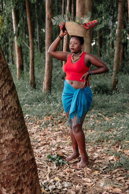 Foto d'estoc gratuïta de a l'aire lliure, Àfrica, autèntic, bosc
