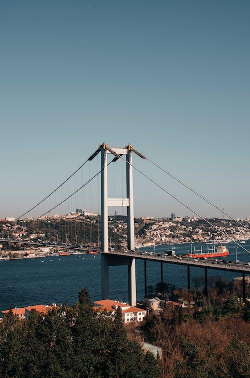 Gratis arkivbilde med arkitektur, bro, by, bybilde