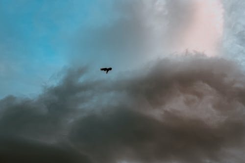 Foto profissional grátis de abstrair, abstrato, alto, ar