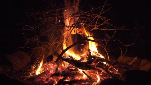 Бесплатное стоковое фото с камин, костер, огонь