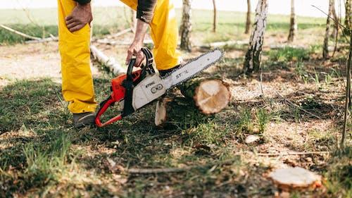 Crop lumberman sawing log with electric power saw