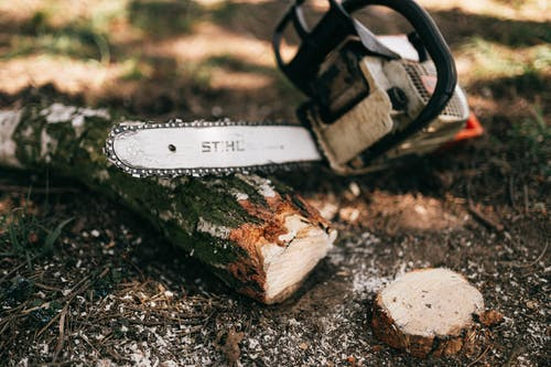 Powerful modern gas chainsaw with steel blade lying on ground near cut log and shrub in forest on sunny weather