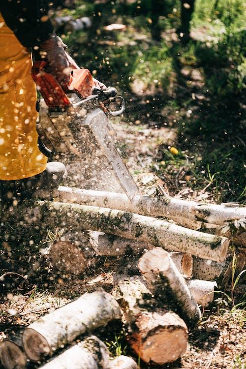 Crop lumberman cutting wood in forest