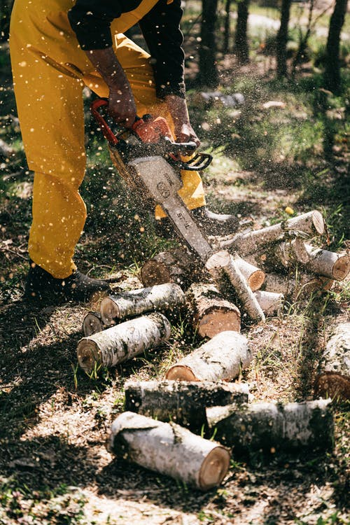Crop anonymous lumberjack in yellow workwear cutting trunks with gas chain saw in green forest during sunny day