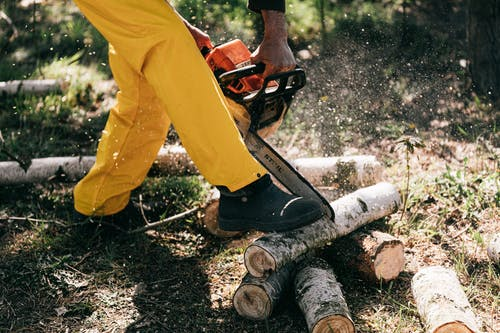 Lower body of crop unrecognizable woodcutter in yellow protective workwear cutting woods with powerful modern chainsaw while working in forest on sunny day