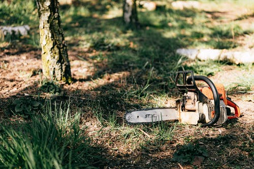 Photo of Chainsaw on Ground