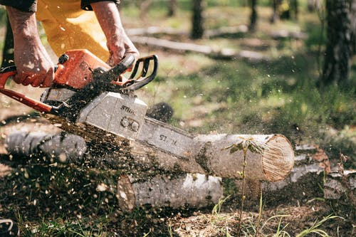 Person Holding Chainsaw