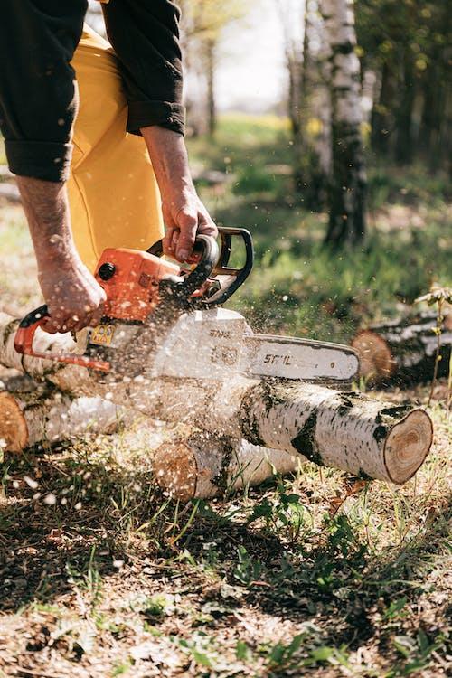 Fotos de stock gratuitas de cadena de corte, leñador, madera
