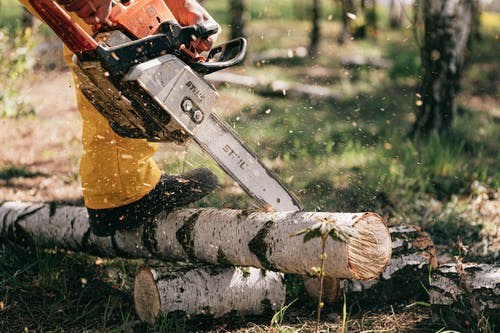 Photo of Person Using Chainsaw