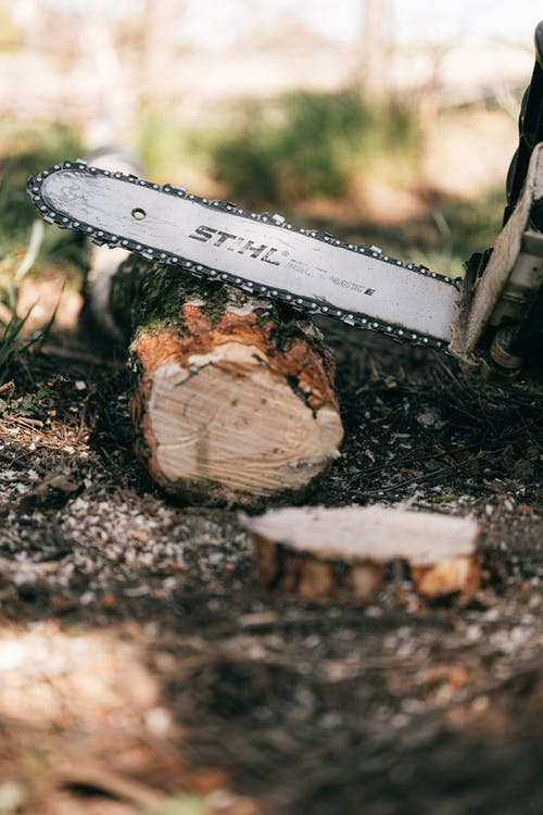 Photo of Chainsaw on Wooden Log