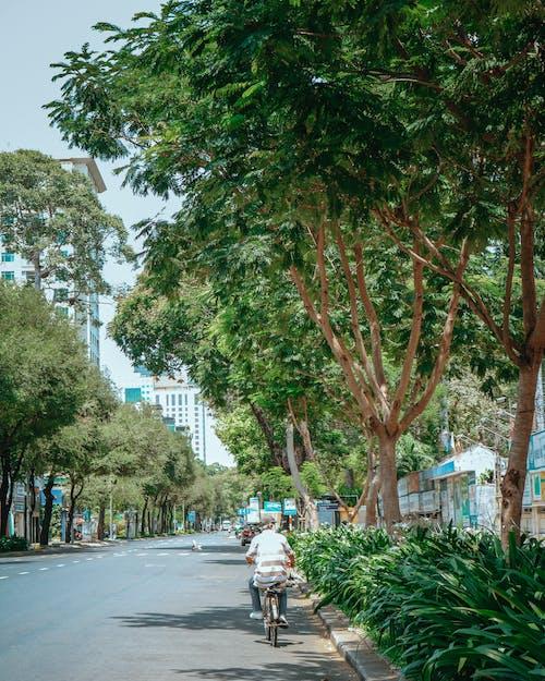Photo of Person Biking on Road Near Trees