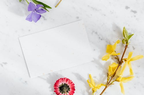 Blank paper sheet surrounded with fresh flowers