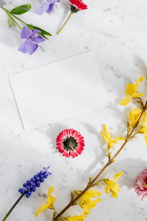 Top view arrangement of multicolored fresh bright flowers placed around blank white paper sheet on marble background