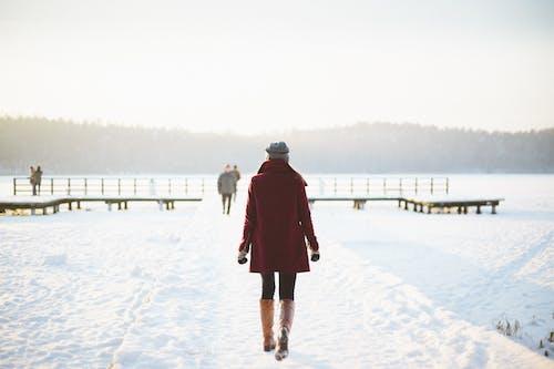 Fotobanka sbezplatnými fotkami na tému chladný, sneh, zamrznutý, žena
