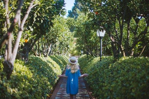 Woman in Blue Dress Walking on a Path