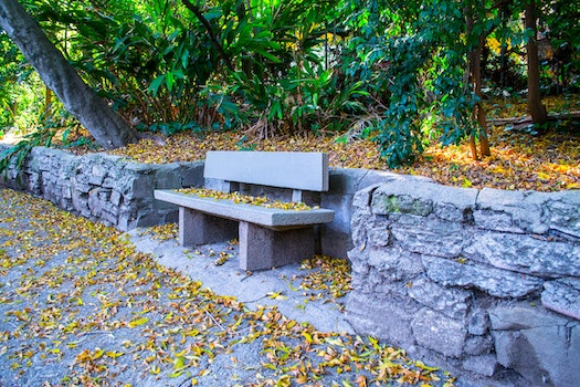 Free stock photo of bench, nature, rocks, forest