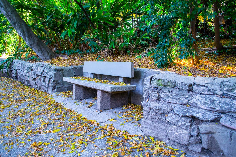New free stock photo of bench, nature, rocks