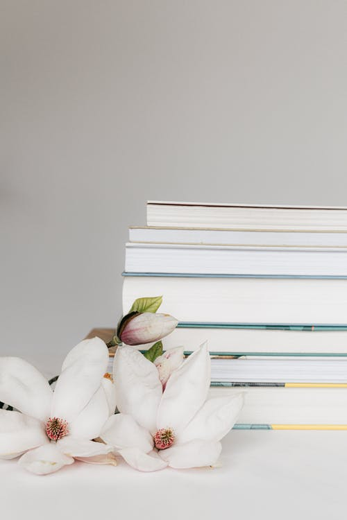 Stack of books near Magnolia flower on table