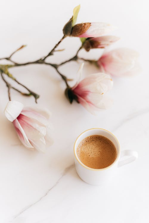 Cup of coffee with twig of blossoms on table