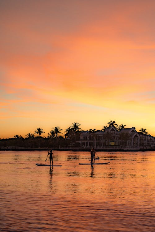 Silhouettes of unrecognizable couple practicing sup board on lake