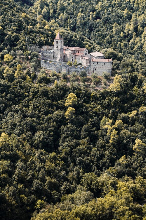 Old castle surrounded by green forest in mountains