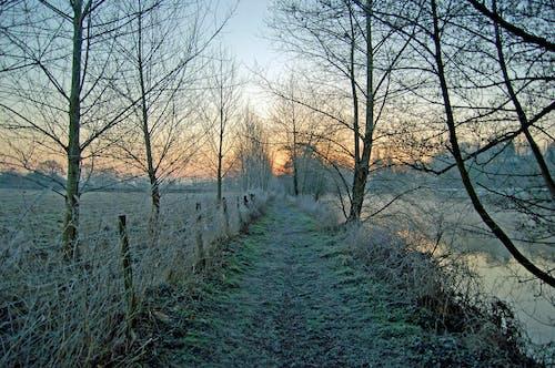 Ilmainen kuvapankkikuva tunnisteilla aamu, aamunkoitto, auringonnousu, jää