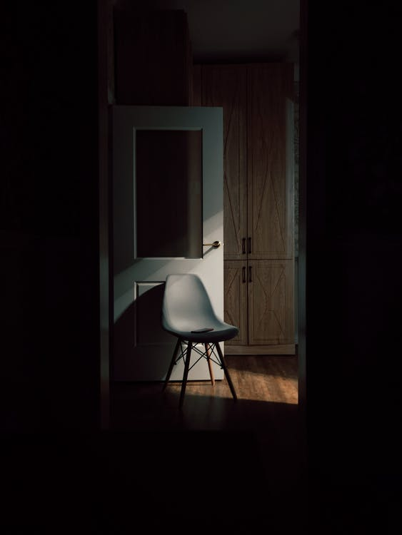 Empty modern chair on shiny parquet near open door and closet in dark classic style flat