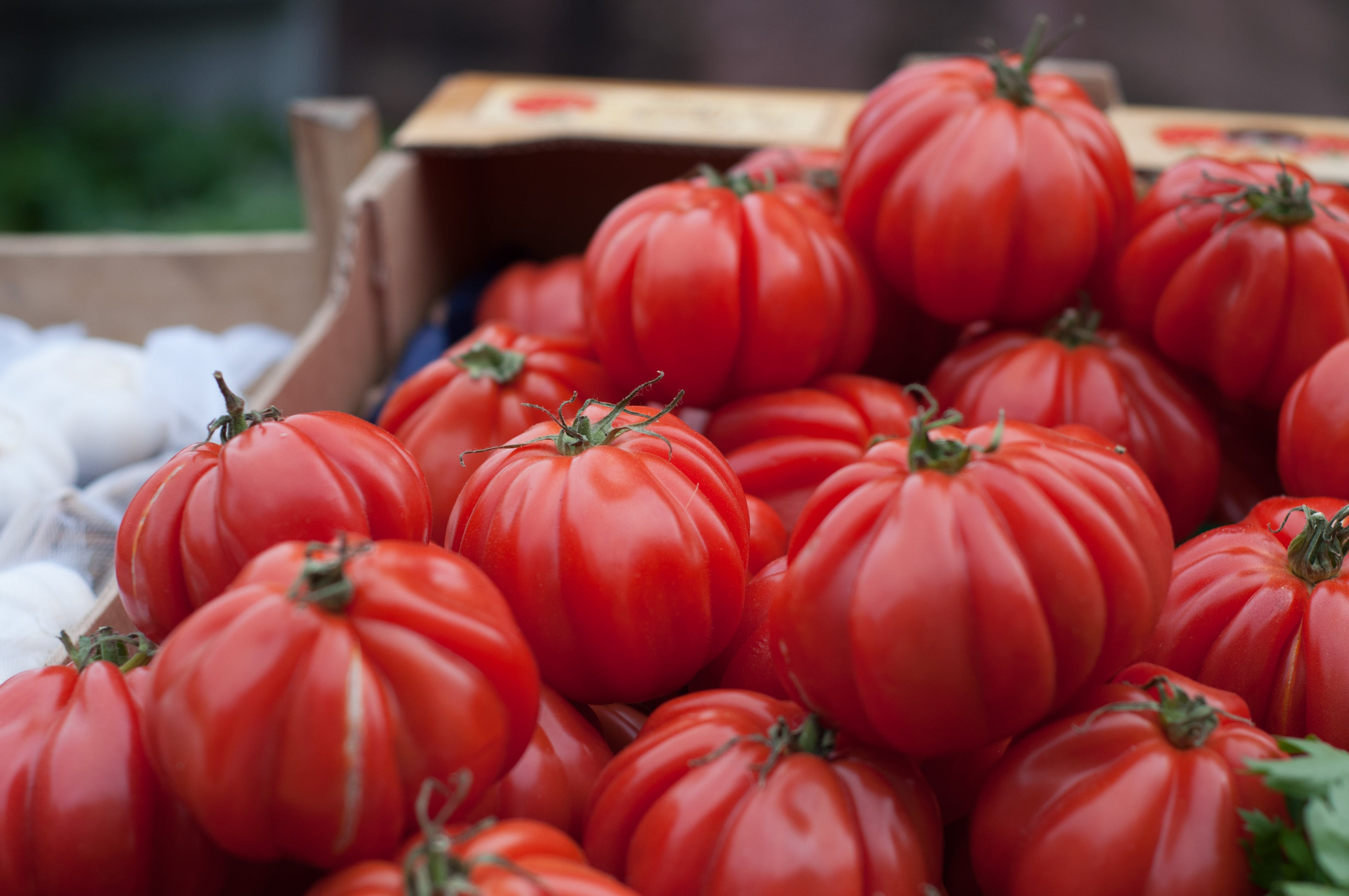 Bunch of Red Tomatoes
