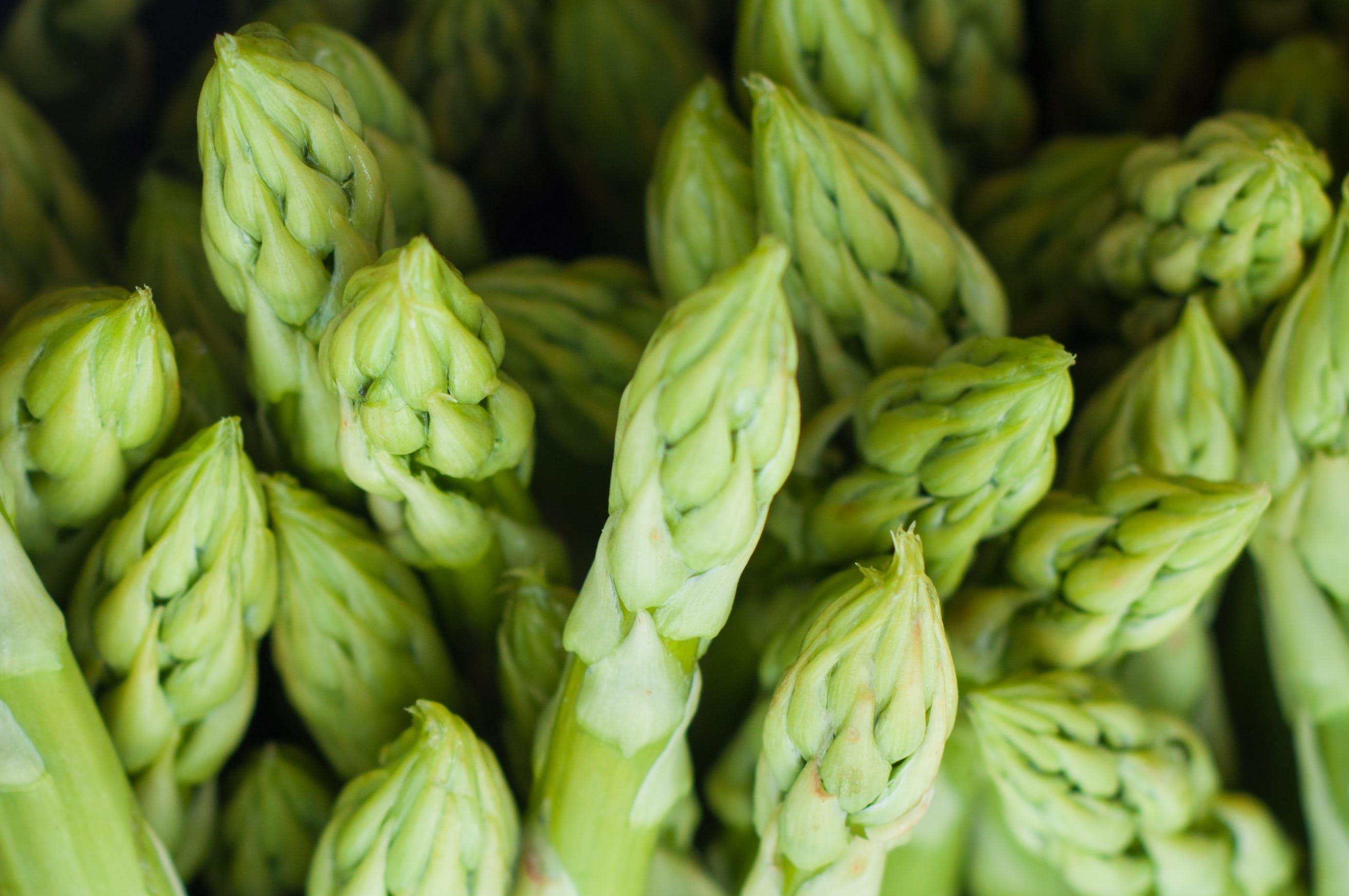 asparges, delikat, frisk