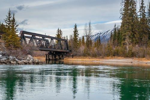 Základová fotografie zdarma na téma Alberta, canmore, hory, kanada