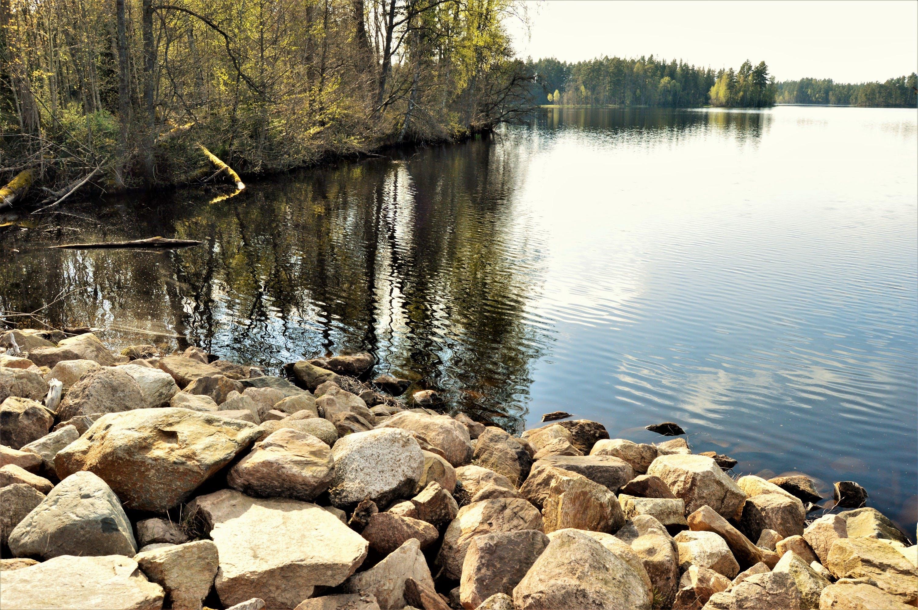 Free stock photo of nature, sunny, water, rocks