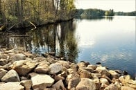 nature, sunny, water