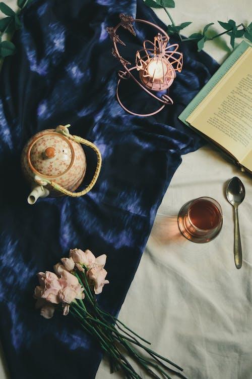 インドア, エルダイト, お茶, カバーの無料の写真素材