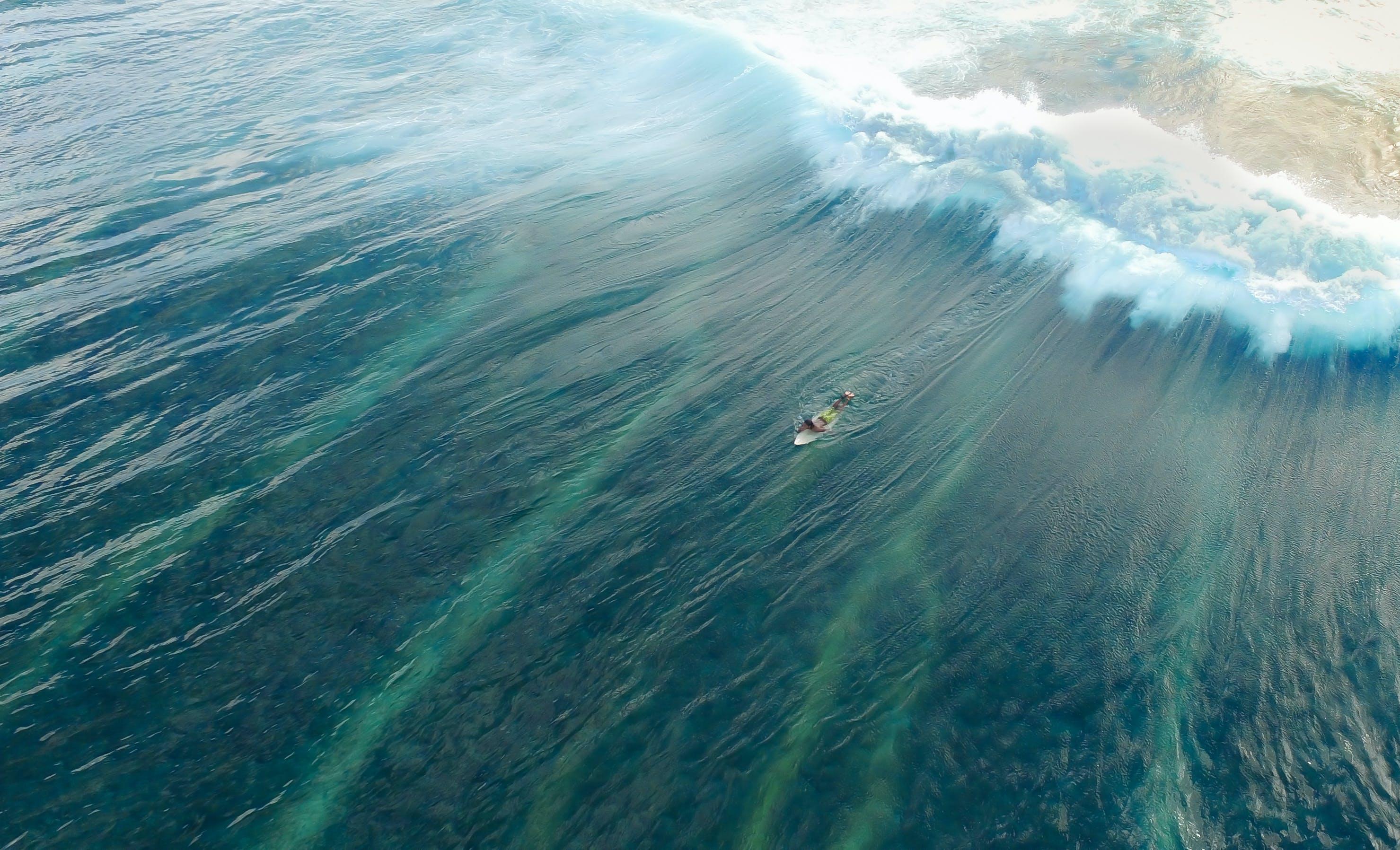 Man on Surfboard Surfing on Wave