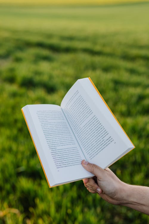 Crop person with book in green field