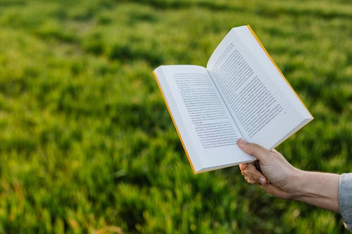 Anonymous person reading book on green meadow