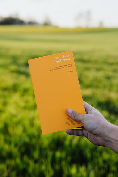 Crop anonymous person with book in hand enjoying peace and quiet of lush green field in summer countryside