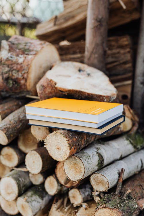 Small stack of books placed on fuelwood pile