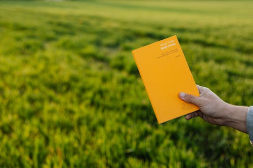 Crop person showing book on green meadow