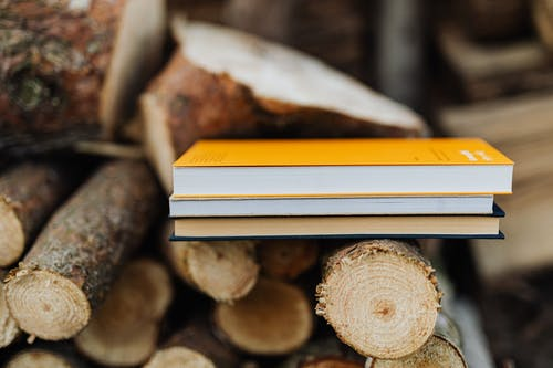 Books placed on edge of freshly prepared woodpile in backyard of countryside house
