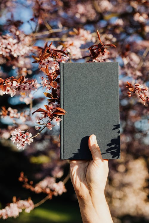 Crop person with black notebook in blooming garden