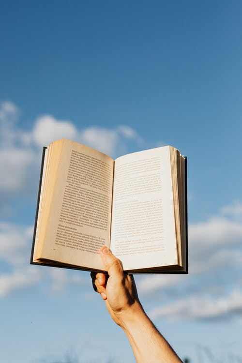 Crop person with book in sunlight