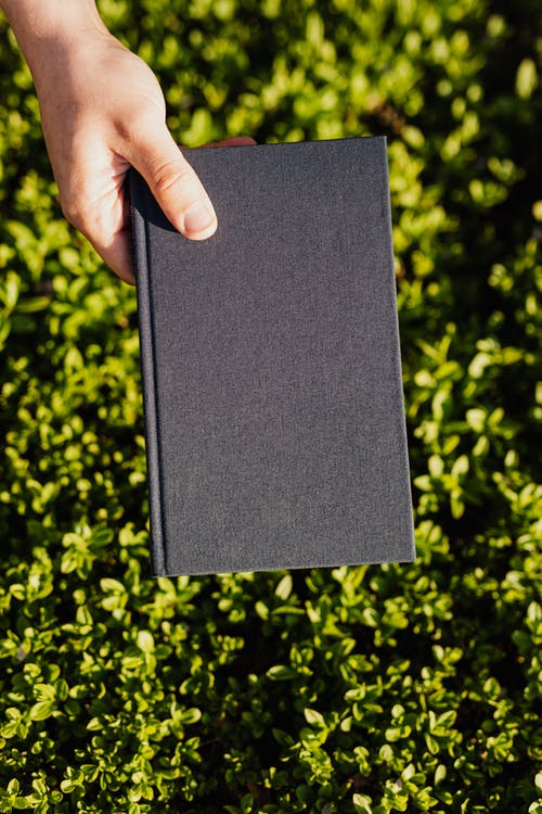 From above crop faceless student with black diary in hand in park with green fresh lawn on sunny day