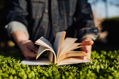 Crop man reading book on grass in sunshine