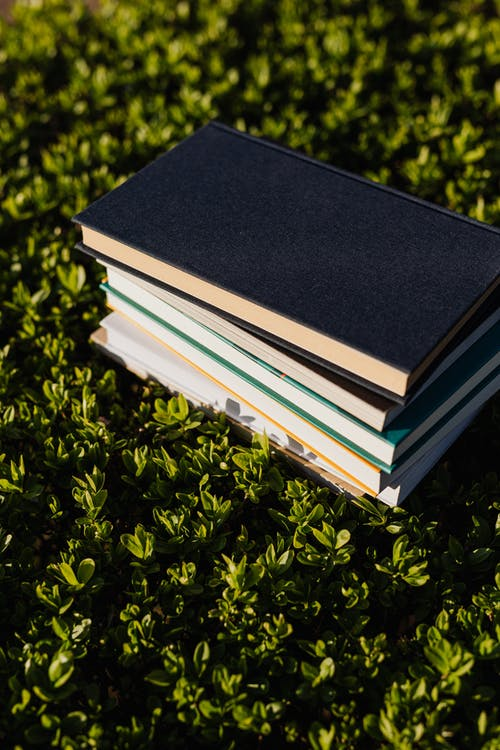 Stack of books on fresh green meadow in bright sunlight