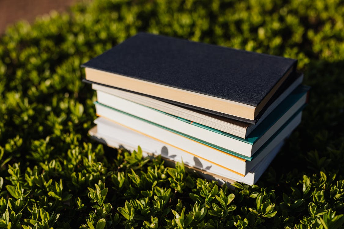 Pile of books on green summer lawn in park