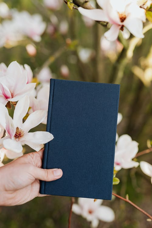 Crop person with book in hand in quiet flower garden